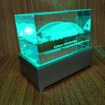 Crystal 3D Exsclusive 1066